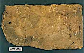 The Appearance Of Stone Slates